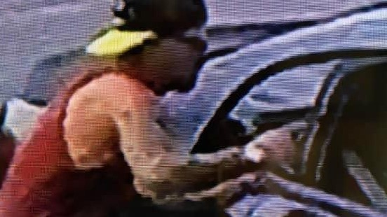 Police search for armed car thief