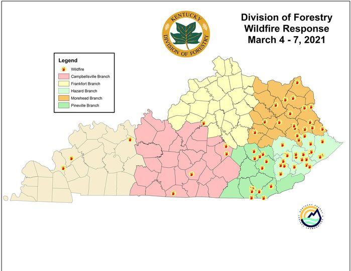 The Kentucky Division of Forestry reports more than 60 fires across the state since March 4, and more than half of them were the result of arson.