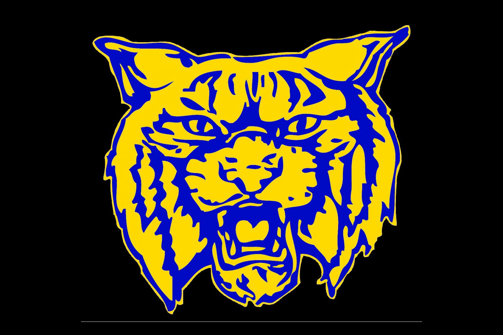 HIGH SCHOOL FOOTBALL: Logan Wildcats schedule